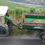 Weinlese - mit dem Traktor und schönem Blick ins Moseltal